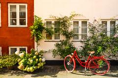 Copenaghen view (Christian Bettin) Tags: 150 iso100 f13 21mm copenaghen denmark nikon d610 travel tamron trip bike citybike street streetview flower flowers sun red window windows