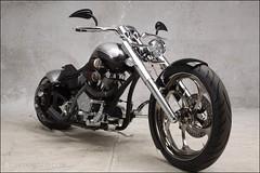 bikes-2009world-011-a-l