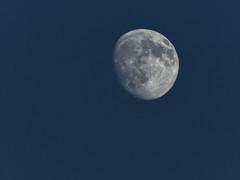moony (256/366) (severalsnakes) Tags: az522 astrozoom kodak missouri pixpro saraspaedy sedalia bridge camera moon night sky superzoom