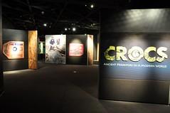Crocs: Ancient Predators in a Modern World (markusOulehla) Tags: americanmuseumofnaturalhistory nyc newyorkcity markusoulehla nikond90 citytrip thebigapple usa manhattan