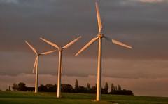 Wind mills in morning light (Per Jensen) Tags: autumn light clouds sunrise denmark windmills dk danmark turbine skyer vindmøller
