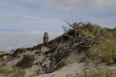 Leuchtturm Darer Ort (RdigerF) Tags: lighthouse beach strand germany balticsea ostsee leuchtturm mecklenburgvorpommern mecklenburgwesternpomerania fischlanddarszingst darserort mygearandme photographyforrecreation rememberthatmomentlevel1 rememberthatmomentlevel2