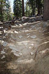 Toads Build Day 10/14/2012 (TAMBA Tahoe) Tags: california mountain lake mountains bike creek october track day ride south nevada trails tahoe toads sierra trail single biking area recreation volunteer build rider saxon association 2012 tamba