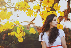 Those whom you remember no more (AnnuskA  - AnnA Theodora) Tags: flowers light brazil portrait woman white selfportrait colors girl yellow hair spring long day afternoon dress bokeh windy ip curl brunette lovely