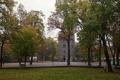 Marktplein, Emmen (Rene Mensen) Tags: autumn red tree green yellow nikon herfst rene boom centrum kerk emmen grote mensen marktplein d5100