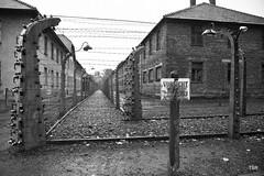 Auschwitz (doveoggi) Tags: poland auschwitz concentrationcamp oświęcim 9376