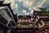Day 11: Yuyuan Garden (isayx3) Tags: china old trip travel project garden nikon downtown shanghai chinese culture sigma pan yu ming f28 dynasty yuyuan d800 14mm plainjoephotoblogcom
