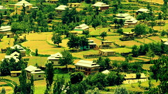 Neelum Valley (Murtaza Mahmud) Tags: trip travel pakistan vacation plants mountains nature colors trekking dof hiking brightcolors kashmir nationalgeographic awayday colorsofnature sighseeing excellentlandscapes scapesky