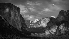 Tunnel View B&W (Brian Hammonds) Tags: california road park trip travel trees light shadow summer bw usa white black mountains west green nature beautiful beauty america trekking trek dark outside outdoors photography coast photo nikon photographer view adams natural bright hiking united tunnel adventure national valley yosemite dome half western states elcapitan ansel pristine d7000