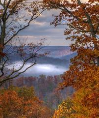 Morning Dew (Phyllis74) Tags: morning autumn mist fall fog sunrise kentucky cumberland cumberlandfalls