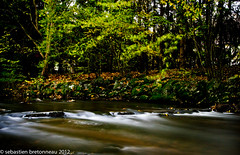 Rosemontoise river in october (Sebastien Bretonneau) Tags: longexposure france color nature colors river october europe couleurs riviere couleur octobre poselongue