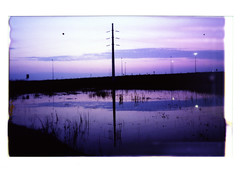 electric purple (Martin<3s4x5) Tags: camera canada film electric by lens polaroid for focus fuji power with view purple little omega wide large front swing f45 iso shutter electricity sw 4x5 got format 16 poles 12 regina saskatchewan monorail nikkor sec tilt 800 exposed selective instax toyo 75mm squirrely effective 45f holde synchrocompur ~20mm 106x84cm
