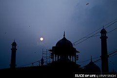 The Jama Masjid (Slice Of Life by Vinay Singh) Tags: india heritage delhi culture mosque newdelhi jamamasjid indiamonuments jamamasjidnewdelhi newdelhimonuments mosquesinindia newdelhiheritage
