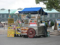Battery Park, NYC (BuonCuore) Tags: street food coffee car truck snacks van cart sales vending olsen concession grumman foodtruck stepvan streetsales