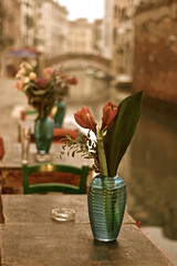 niceVenice (lifeinapixel) Tags: bridge flowers venice red italy table restaurant pot tulip laguna venezia ristorante canale tavoli veneto