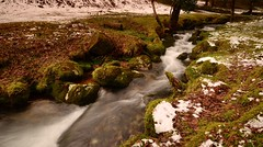 WORKING MY WAY THROUGH THE LAND (russell D7000 (D80)) Tags: trees winter snow cold water beauty leaves long exposure devon brook dartmoor narrator burrator riverscape sheepstor
