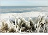 Kuiend ijs (1D134560) (nandOOnline) Tags: winter berg nederland natuur vuurtoren marken landschap noordholland ijselmeer ijs vorst markermeer vriezen ijsschotsen kruiendijs dooien paardvanmarken