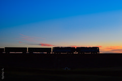 Sunset time... (N.Batkhurel) Tags: sky season sunset silhouette autumn railway railfan trains train trainspotting transport tuv ubtz mongolia monrailpic ngc nikon nikondf 1520 2te116um locomotive freighttrain