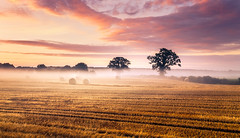 Sunset as the fog sweeps through (doodlewhale) Tags: sunset sun set fog mist field landscape serence clouds sky tranquil hay bales trees sundown
