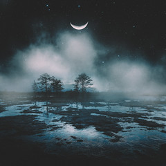 Moon-rise (Ramin Hossaini) Tags: bog marsh swamp winter landscape icy cold frosty ground lake nature freeze snow snowy trees water frost ice forest countryside frozen waters sky tree outdoor
