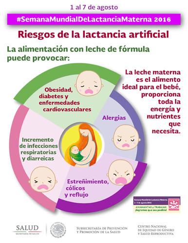 4_Riesgos_de_Lact_Artificial