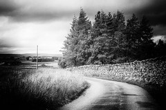 Stormy Day (MacBeales) Tags: fells cumbria lake hills district uk britain black white wall trees artlegarth canon eos 70d blackwhite road grass stormy clouds pinhole silver efex nik filters