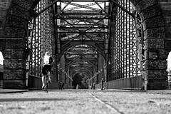 Hamburg (michael_hamburg69) Tags: hamburg germany deutschland river fluss elbe elbbrcke bridge alteharburgerelbbrcke 1899 stahlbogenbrcke stahl steel sderelbe steelarchbridge