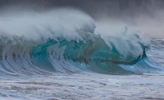 ready to strike (bluewavechris) Tags: maui hawaii makena oneloa bigbeach ocean water sea swell surf wave shorebreak lip barrel tube spray foam canon color