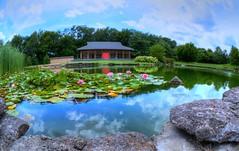 Yuko-En on the Elkhorn (Phyllis74) Tags: japanesegarden garden japanese pond lake koipond koi lillypadpond lillypond waterlilly water flowers rocks architecture