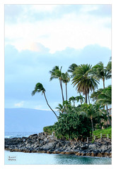 Maui-20151223-747 (Sunil Mishra) Tags: beach hawaii lahaina landscape maui napilibay sunset unitedstates