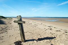 Aberlady beach - Explored :-) (NSJW photos) Tags: aberlady scotland sign signpost footpath dunes sandunes information nsjwphotos