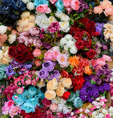 Flowers (Francisco Anzola) Tags: istanbul turkey city shopping bazaar market souk