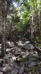 Giant Mountain Trail, NY (AmiCalmant) Tags: mountain forest adirondack hiking trail landscape autumn