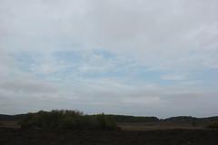 Big Skies (Ali Black) Tags: new trees sunset sky sun black clouds forest sunrise canon grey dawn big skies gloomy dusk overcast hampshire ali southampton newforest hythe 550d dibden dibdenpurlieu purlieu aliblack canon550d aliblackr