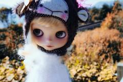 Fall daydreamer...