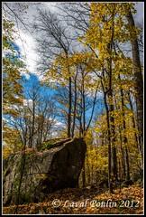 Erratic rock (Loupin101) Tags: temp lieux autre montwright promenadesetrandonnées montwright13octobre2012