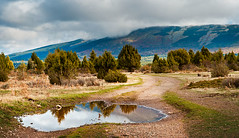 a small landscape (manolo guijarro) Tags: mountain reflection water landscape agua pano 85mm paisaje sierra segovia reflejo montaa scape guadarrama panormica charco arcones nikond700 manologuijarro
