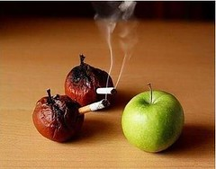 Quit smoking (DX_fans) Tags: ashtray quitsmoking dx electroniccigarette dealextreme dxcom usbrechargeablecigarette
