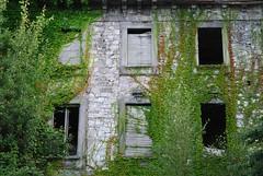 abandoned (gilly youner) Tags: vacation italy house abandoned window island ruin ivy shutters lagomaggiore stresa borromeo overrun