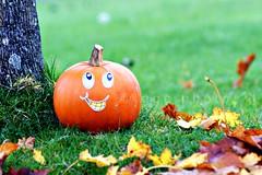 mr happy pumpkin... O‿o (ggcphoto) Tags: blur halloween smile horizontal pumpkin happy eyes bokeh teeth autumnleaves 300mm treetrunk greengrass happyeyes sonyalpha gettyimagesirelandq12012