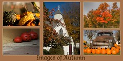 images of autumn (bonnie5378) Tags: trees friends church gourds collage pumpkins oldtruck autumncollage ilovemypics photosofqualitytosmileabout naturewithallitswonders oct2012 creativephotocafe