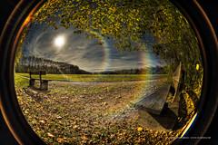 Regard sur l'automne
