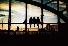 Watching an Urban Sunset (lomokev) Tags: city bridge sunset portrait sky people urban silhouette yellow germany munich bayern lomo lca xpro lomography crossprocessed xprocess cityscape lomolca lomograph lomographyxprochrome100 roll:name=121024lomoxpro100 file:name=121024lomoxpro10014