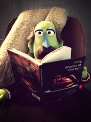 """004 - """"Oh, Dear!"""" (Mike Nitsopoulos Photography) Tags: green chicken cooking reading book chair puppet character bald felt moustache blanket photoaday surprise shock 365 muppet throw recipebook 50shades 50shadesofgrey uploaded:by=flickrmobile flickriosapp:filter=mammoth mammothfilter"""