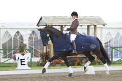 IMG_0801 (RPG PHOTOGRAPHY) Tags: final awards hickstead 5y 200712