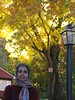 Dutchess County, NY-15.11 (davidmagier) Tags: usa newyork fallfoliage brewster scarves aruna