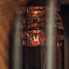 Filament (Adrian Gimpel) Tags: tube valve amplifier macro filament glow fender el84 6bq5 nikonafsvrmicronikkor105mmf28gifed