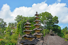 Ubud,  Bali (cpcmollet) Tags: ubud bali indonesia asia landscape paisaje green sky verde beauty trees calm flickr colour architecture arquitectura island travelling nature
