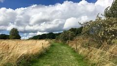 Weg zur Mnchguter Hofbrennerei (hellrac3r) Tags: rgen ostsee germany balticsea himmel landschaft outdoor