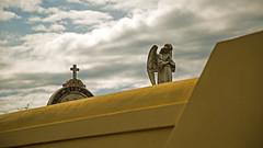 Prayer under summer clouds (Eilis88) Tags: angel statue caorle veneto italy graveyard art wall yellow clouds sky cloudy summer stone history prayer faith